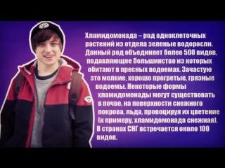 Ивангай: