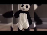 Man United legend Patrice Evra dresses up as a panda to fight racism in awesome video