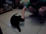 video-2013-05-29-23-45-31