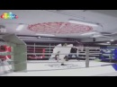 Древарх Просветленный вышел на бойцовский ринг против Майкла Тайсона и победил