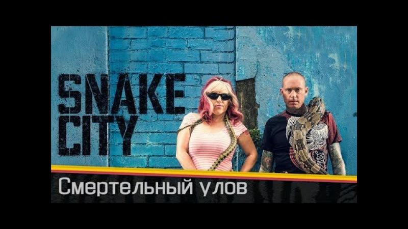 Змеи в городе / Snake City | Смертельный улов