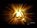 Allah Kur'an'da niçin biz diyor ben demiyor