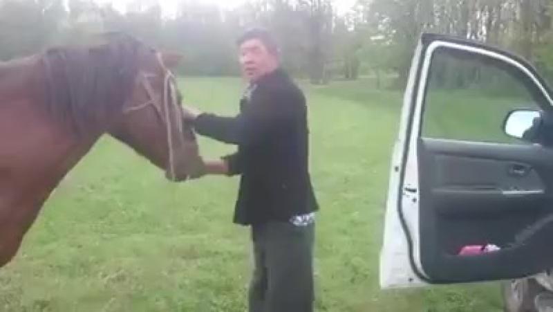 Ковбой)