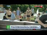 ВДВшник в ПРЯМОМ эфире ударил журналиста НТВ!! Москва День ВДВ 2017