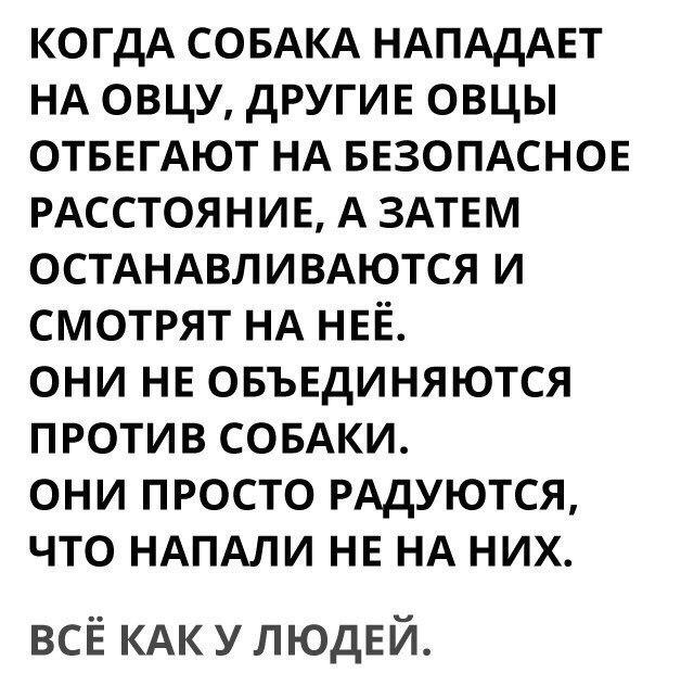 Кирилл Брожик |
