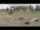 Тренировочка. Цель: Меняем ножки. Баланс. Равновесие. Внимательность, уверенность лошади. А так же ритм и импульс.