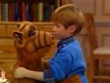 Alf Quote Season 1 Episode 7_Альф и Брайан