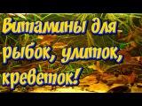 Дубовые листья, листья крапивы,  листья ореха в аквариуме как подкормка и дезинф ...