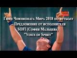 Гимн Чемпионата мира 2018 по футболу  Предложение от исполнителя SOFI София Мальцева