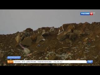 Жители домов возле кучинского полигона задыхаются от смрада