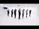 BTS - 피 땀 눈물 (Blood Sweat & Tears) Dance Practice