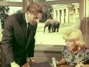 Дети Дон Кихота (1965) трагикомедия