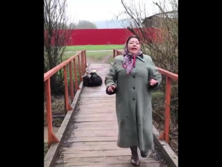 Боня и Кузьмич» собираются снять ремейк на «Любовь и голуби»