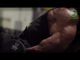 2016 Mr. Olympia Predictions - TOP 4 Bodybuilders