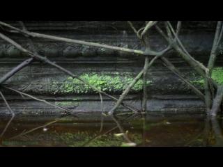BBC «В краю муссонов (1). В ожидании дождя» (Документальный, 2014)
