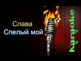 Слава - Спелый мой ( караоке )