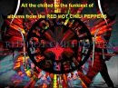 All the best of the RED HOT CHILI PEPPERS 1