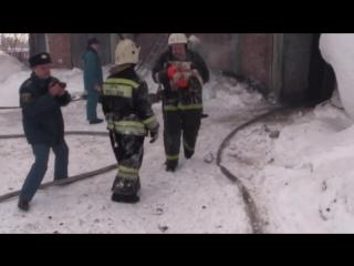 Томские спасатели вынесли из огня 150 поросят