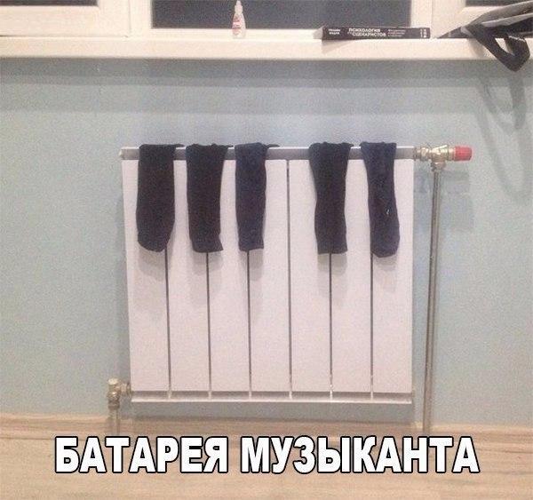 Молодой писатель Гоша Кавригин написал книгу...