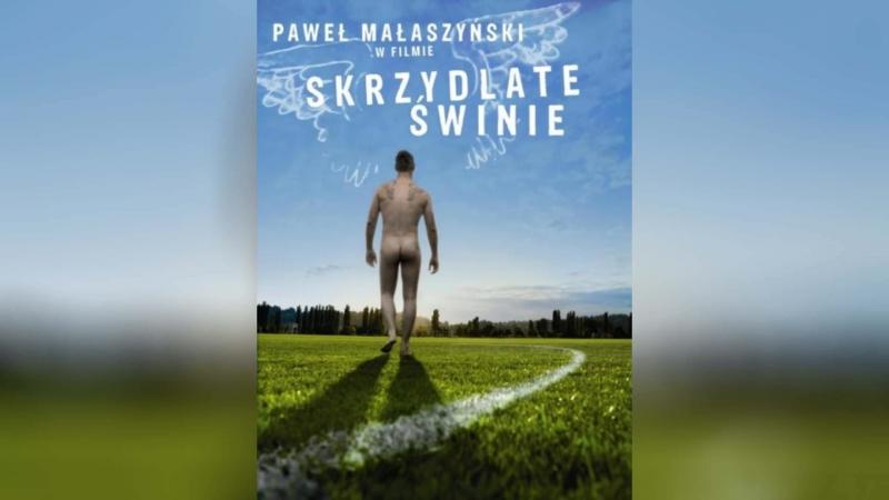 Крылатые свиньи (2010) | Skrzydlate swinie