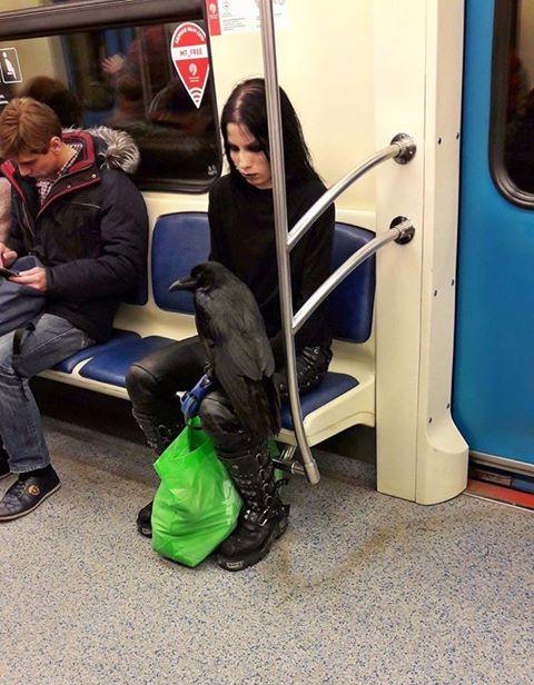 Самые модные пассажиры московского метро