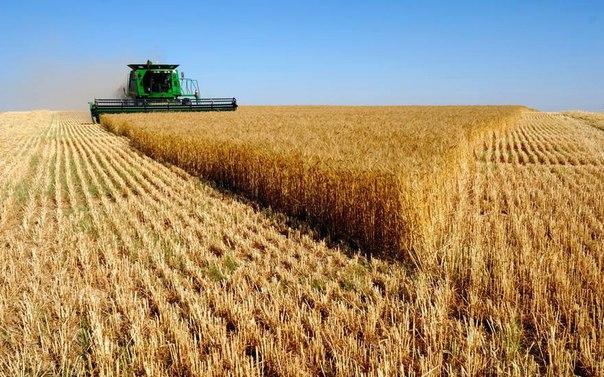 Türkiye'de Tarım Sektöründe Çok Fazla Yapısal Sorun Var