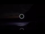 Hidden Orchestra - Still (Official Video)