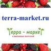 Саженцы почтой Россия /Terra-Market