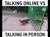 В интернете vs В реальной жизни