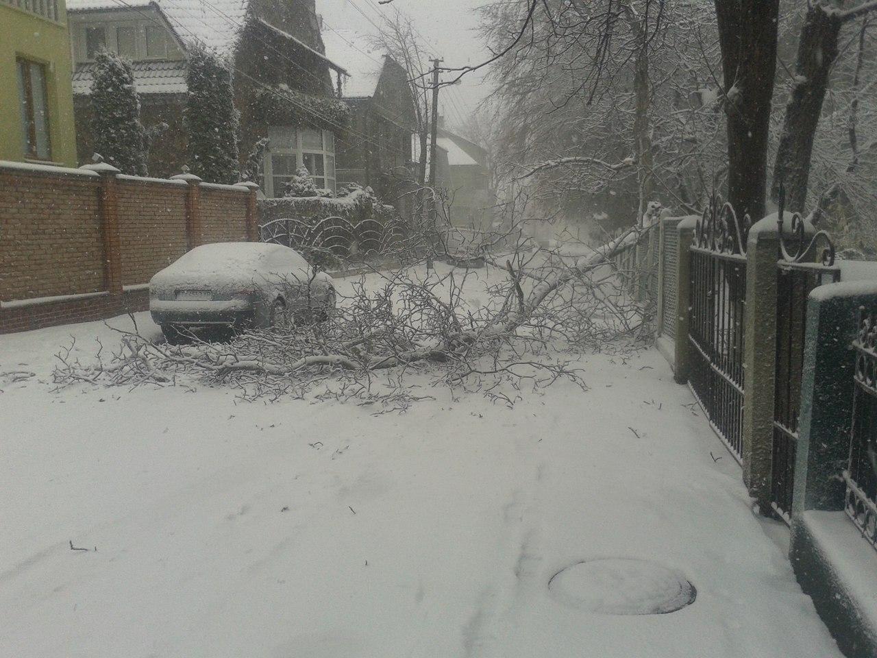 Снегопад в Украине: спасатели вытаскивают автомобили из снежных заносов и расчищают трассы, заваленные сломанными деревьями - Цензор.НЕТ 9144