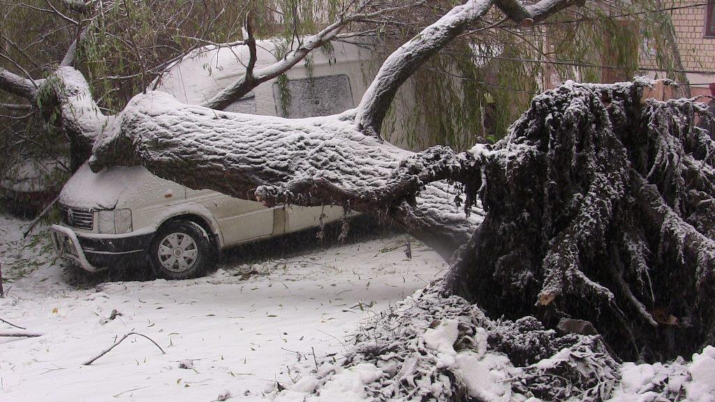За добу рятувальники здійснили 16 виїздів. Прибирали повалені дерева, буксирували автівки (ФОТО)
