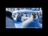 kaisoo kyungsoo dancing penguin