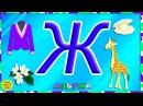 Азбука для малышей. Буква Ж. Учим буквы вместе. Развивающие мультики для детей
