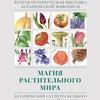 Петербургская выставка ботанической живописи