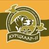 """Секция любителей охотничьих собак """"Курцхаар-II"""""""