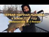 ПЕРВАЯ УДАЧНАЯ РЫБАЛКА в новом 2017 году. Видеоотчёт за 02/01