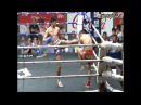 Muay Thai Knock Out HUGE KNEE BODY KICK K O