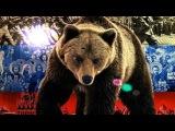 Михаил Гулько - Русский медведь