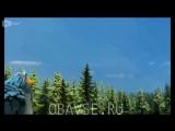 Qanotlar uzbek tilida Multfilm