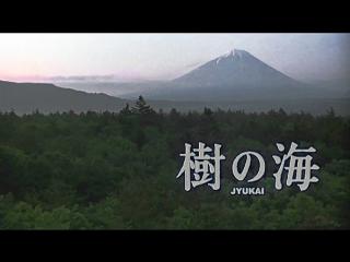 Jyukai: The Sea of Trees Behind Mount Fuji / Ki no umi / Море деревьев (2004) (Русские субтитры)