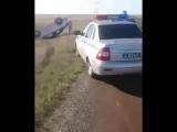 Автомобиль улетел в кювет из-за полчищ саранчи на дороге.