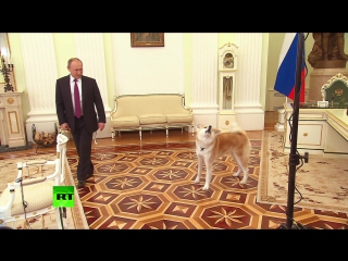 Собака Путина облаяла японских журналистов