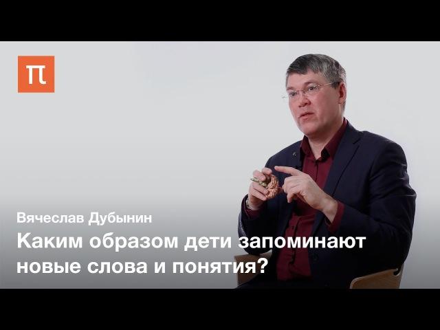 Центры мышления и принятия решений — Вячеслав Дубынин