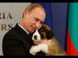 Что японцы думают про Путина