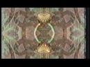 Corum - Emergent Serpents
