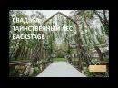 Свадьба Таинственный лес Красивая свадьба и выездная регистрация загородом