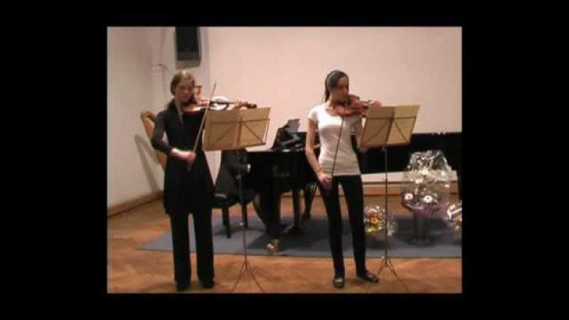 Antonio Vivaldi, Konzert op.3, Nr. 11 in d-moll für 2 Violinen, I. Allegro