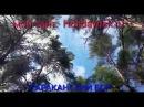 """Гостевой дом """"Райское гнездышко"""" отдых на берегу Обского моря Караканский Бор яг..."""