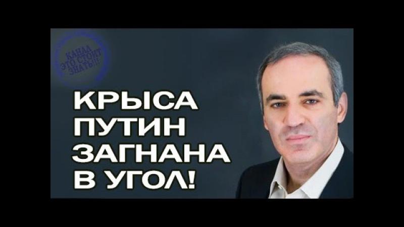 Гарри Каспаров - Что теперь предпримет Путин! 21 мая 2017