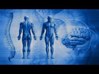 Новейшие открытия в нейропсихологии (рассказывает профессор Луис де Лесиа)